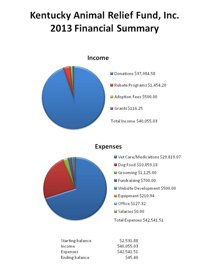 KARF 2013 Financial Statement
